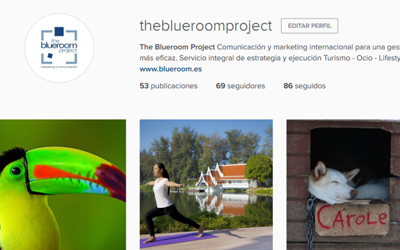 The Blueroom Project on Instagram!
