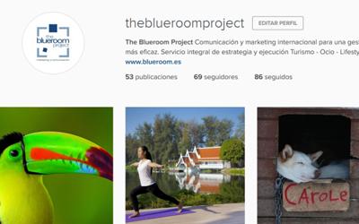 ¡The Blueroom Project en Instagram!