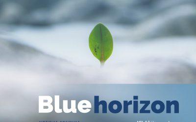 ¡Lanzamos Blue Horizon!  ¡Lanzamos Blue Horizon!